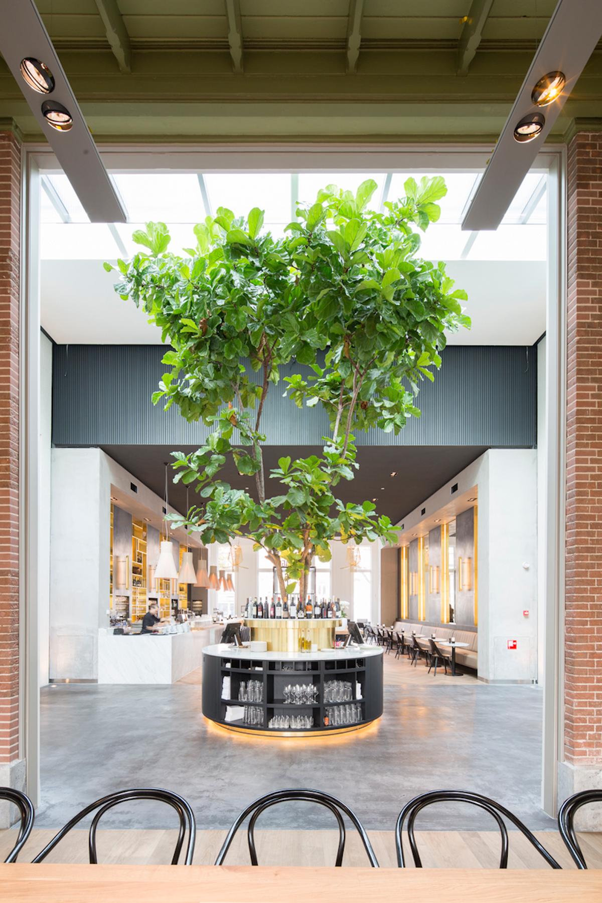 Plantage-Amsterdam-2